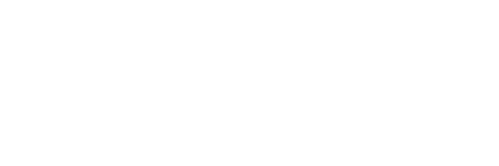 Gold Solution Partner white -1